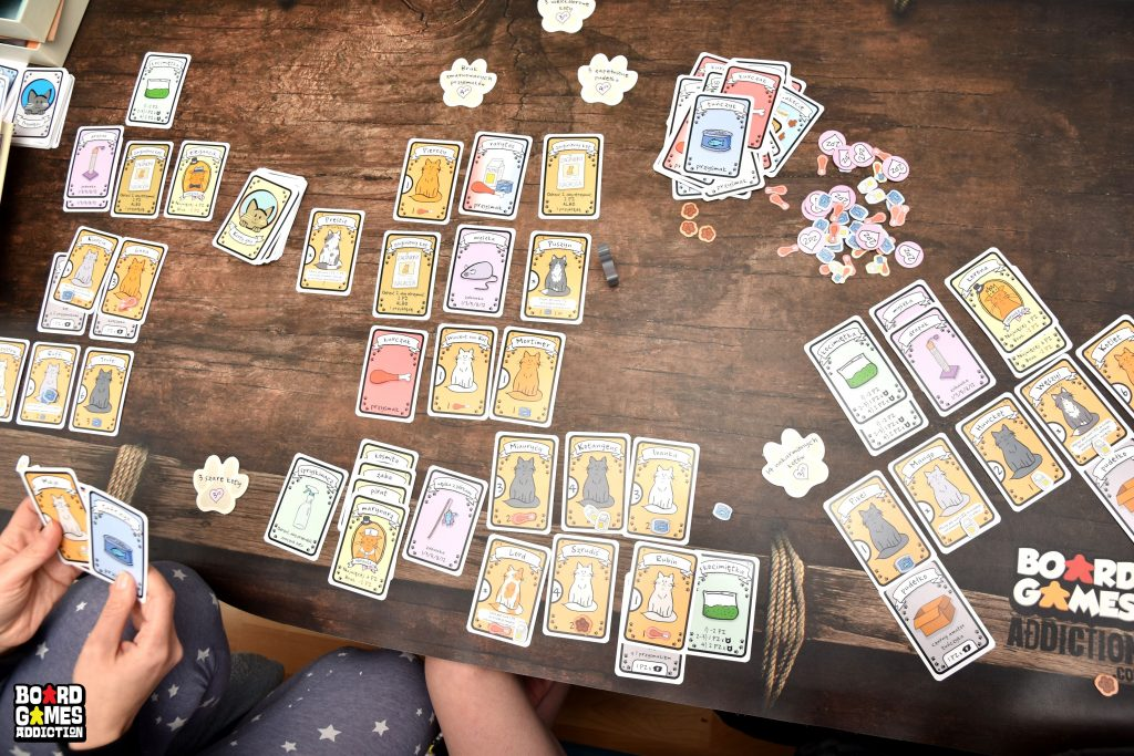 Najlepsza Gra o Kotach Pudełko Łakoci | Board Games Addiction